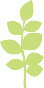 leafy_branch_KBS.png